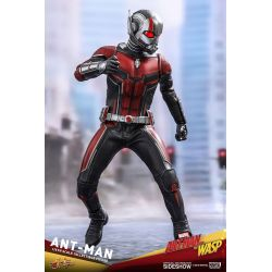 Ant-Man Hot Toys MMS497 1/6 action figure (Ant-Man and The Wasp)