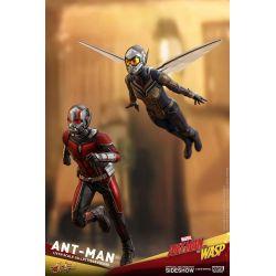 Ant-Man Hot Toys MMS497 figurine 1/6 (Ant-Man et la Guêpe)