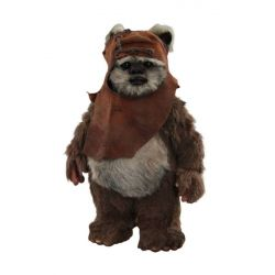 Wicket Hot Toys MMS550 1/6 (Star Wars VI : Return of the Jedi)