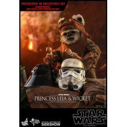 Princesse Leia et Wicket Hot Toys MMS551 1/6 (Star Wars VI : Le Retour du Jedi)