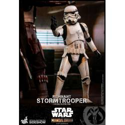 Remnant Stormtrooper Hot Toys TMS011 (Star Wars The Mandalorian)
