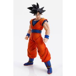 Son Goku Imagination Works 1/9 (Dragon Ball)