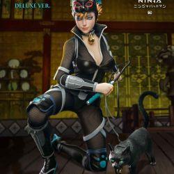 Catwoman Star Ace Toys My Favorite Movie figure Deluxe (Batman Ninja)