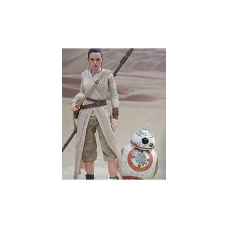 Rey and BB-8 Hot Toys MMS337 (Star Wars VII : The Force Awakens)