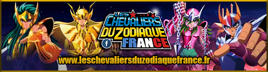 Les Chevaliers du Zodiaque France